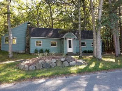 Pentwater Single Family Home For Sale: 7083 S Lakeshore Drive