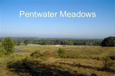 Residential Lots & Land For Sale: Meadow View Lane