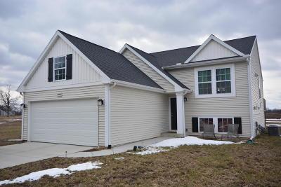 Vicksburg Single Family Home For Sale: 14680 Portage Road