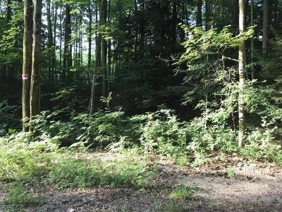 Residential Lots & Land For Sale: Ottawattamie Trail