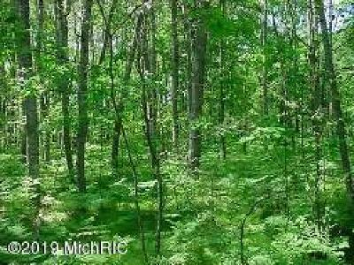 Mecosta Residential Lots & Land For Sale: 6166 Fox Run Circle