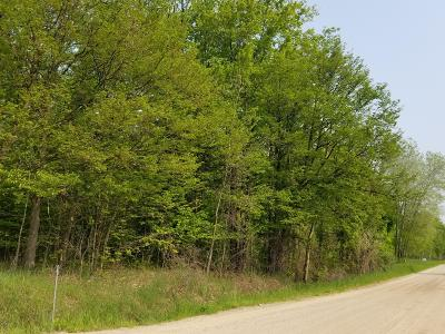 Oceana County Residential Lots & Land For Sale: 8.89 A 100th Avenue