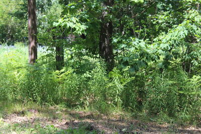 Muskegon Residential Lots & Land For Sale: 186 Vernon Avenue