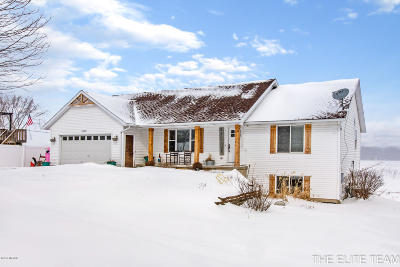 Jenison Single Family Home For Sale: 2029 Bauer Rd