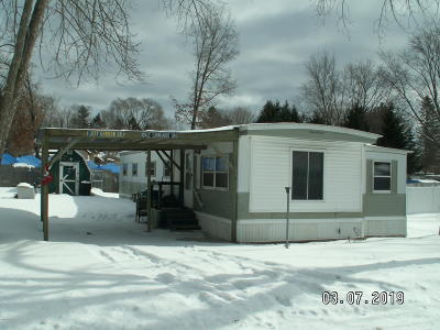 Newaygo Single Family Home For Sale: 4690 River Street