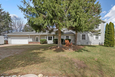 Howard City Single Family Home For Sale: 8419 E 98th Street