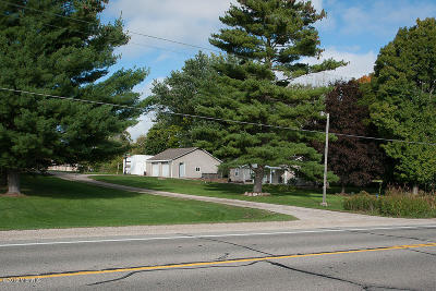 Big Rapids Single Family Home For Sale: 11333 Northland Drive
