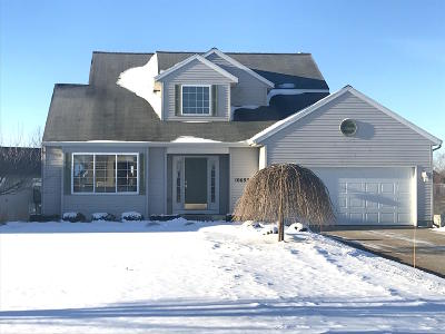 Allendale Single Family Home For Sale: 10693 Little Bass Court