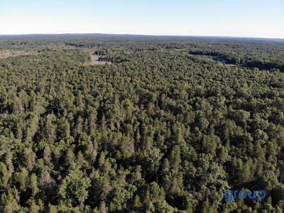 Benzie County, Charlevoix County, Clare County, Emmet County, Grand Traverse County, Kalkaska County, Lake County, Leelanau County, Manistee County, Mason County, Missaukee County, Osceola County, Roscommon County, Wexford County Residential Lots & Land For Sale: 193 Acre Forest