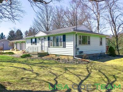 Ionia County Single Family Home For Sale: 667 Division Street