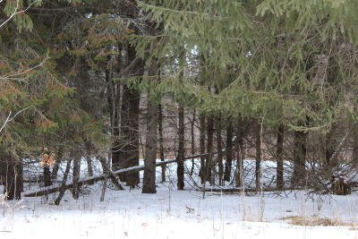 Benzie County, Charlevoix County, Clare County, Emmet County, Grand Traverse County, Kalkaska County, Lake County, Leelanau County, Manistee County, Mason County, Missaukee County, Osceola County, Roscommon County, Wexford County Residential Lots & Land For Sale: 1136 7 Mile Rd Road