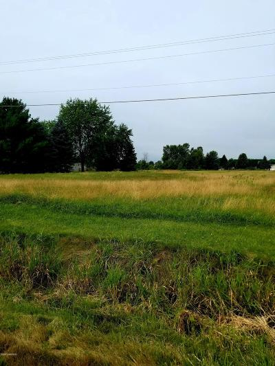 Allendale Residential Lots & Land For Sale: 10711 78th Avenue