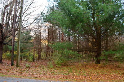 Saugatuck, Douglas Residential Lots & Land For Sale: 316 N Maple Street