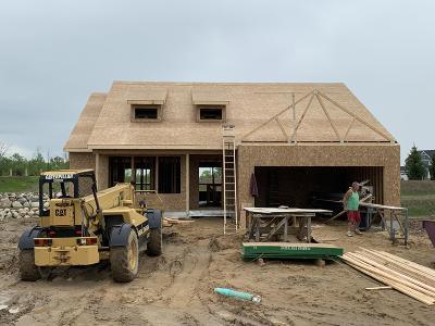 Single Family Home For Sale: 8893 Abbington Drive #Lot 295