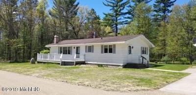Baldwin Single Family Home For Sale: 7481 S M-37 Highway