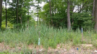New Buffalo Residential Lots & Land For Sale: 504 S Jameson Street