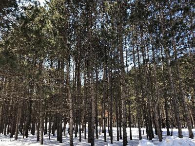 Canadian Lakes MI Residential Lots & Land For Sale: $4,500