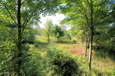 Residential Lots & Land For Sale: 104th Street