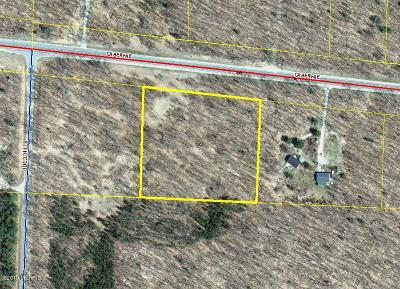 Benzie County, Charlevoix County, Clare County, Emmet County, Grand Traverse County, Kalkaska County, Lake County, Leelanau County, Manistee County, Mason County, Missaukee County, Osceola County, Roscommon County, Wexford County Residential Lots & Land For Sale: Caberfae 4.6 Acre Highway