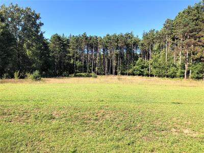 Benzie County, Charlevoix County, Clare County, Emmet County, Grand Traverse County, Kalkaska County, Lake County, Leelanau County, Manistee County, Mason County, Missaukee County, Osceola County, Roscommon County, Wexford County Residential Lots & Land For Sale: Us 10