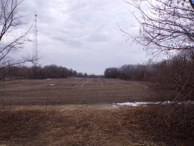 Paw Paw Residential Lots & Land For Sale: 59708 Cr 671
