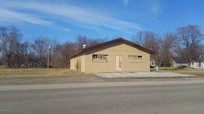 Berrien County Commercial For Sale: 1069 Highland Avenue