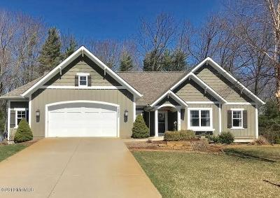 Grand Haven Single Family Home For Sale: 16823 Watersedge Drive