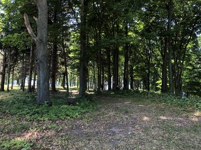 Benzie County, Charlevoix County, Clare County, Emmet County, Grand Traverse County, Kalkaska County, Lake County, Leelanau County, Manistee County, Mason County, Missaukee County, Osceola County, Roscommon County, Wexford County Residential Lots & Land For Sale: 9 W Szerlong Road