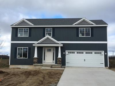 Newaygo Single Family Home For Sale: Lot 3 N River Hills Drive