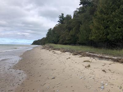 Benzie County, Charlevoix County, Clare County, Emmet County, Grand Traverse County, Kalkaska County, Lake County, Leelanau County, Manistee County, Mason County, Missaukee County, Osceola County, Roscommon County, Wexford County Residential Lots & Land For Sale: Lot 5 N. Lakeview Road