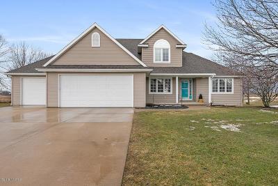 Zeeland Single Family Home For Sale: 2651 Air Park Drive