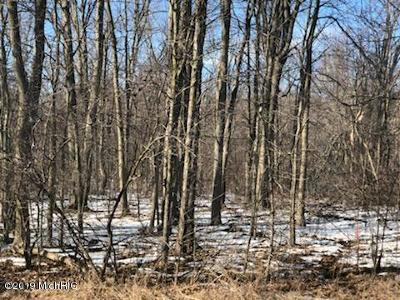 Allegan County, Barry County, Clinton County, Eaton County, Gratiot County, Ingham County, Ionia County, Isabella County, Kent County, Mecosta County, Montcalm County, Muskegon County, Newaygo County, Oceana County, Ottawa County Residential Lots & Land For Sale: Parcel Seeley Road