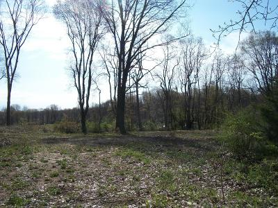 Gobles Residential Lots & Land For Sale: 31523 Jefferson Avenue