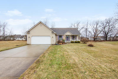 Schoolcraft Single Family Home For Sale: 11856 Blue Ridge Drive