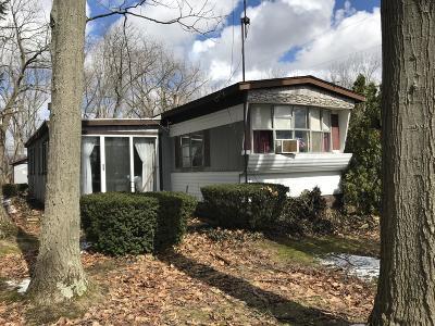 Bangor Single Family Home For Sale: 65502 Park Avenue