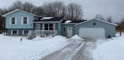 Missaukee County Single Family Home For Sale: 2172 S Sara Drive