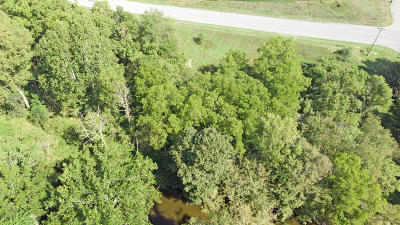 Clinton County, Gratiot County, Isabella County, Kent County, Mecosta County, Montcalm County, Muskegon County, Newaygo County, Oceana County, Ottawa County, Ionia County, Ingham County, Eaton County, Barry County, Allegan County Residential Lots & Land For Sale: 10966 100th Street SE #D