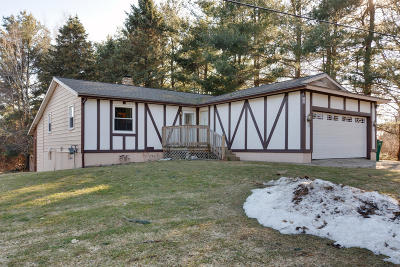 Single Family Home For Sale: 180 9 Mile Road NE