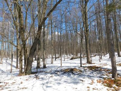 Benzie County, Charlevoix County, Clare County, Emmet County, Grand Traverse County, Kalkaska County, Lake County, Leelanau County, Manistee County, Mason County, Missaukee County, Osceola County, Roscommon County, Wexford County Residential Lots & Land For Sale: 8931 E 7 Mile Road