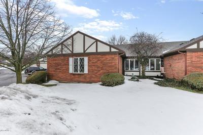 Grand Rapids Condo/Townhouse For Sale: 2212 Radcliff Circle SE