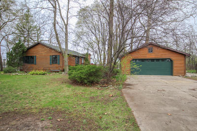 Mendon MI Single Family Home For Sale: $310,000