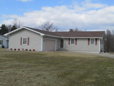 Single Family Home For Sale: 256 Riverview Drive