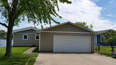 Mears MI Single Family Home For Sale: $325,000