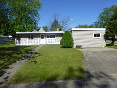 Ludington Single Family Home For Sale: 510 E Tinkham Avenue