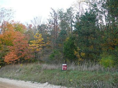 Berrien County, Branch County, Calhoun County, Cass County, Hillsdale County, Jackson County, Kalamazoo County, St. Joseph County, Van Buren County Residential Lots & Land For Sale: 00000 57th Street