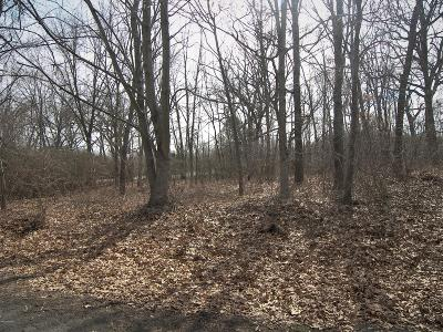 New Buffalo Residential Lots & Land For Sale: 14230 Evergreen Drive