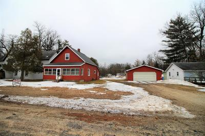 White Cloud Single Family Home For Sale: 966 E Newell Street