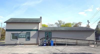 Big Rapids Commercial For Sale: 1003 N State Street