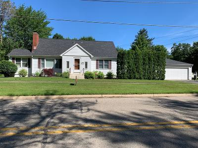 Harbert, Lakeside, New Buffalo, Sawyer, Three Oaks, Union Pier Single Family Home For Sale: 1206 W Detroit Street