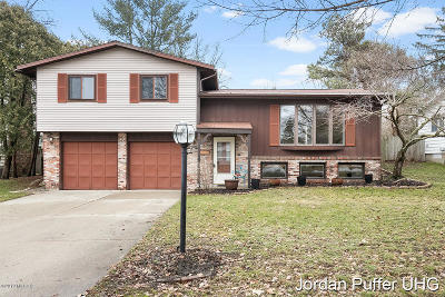 Ottawa County, Kent County Single Family Home For Sale: 218 Luray Avenue NW